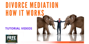 Video #39 - Working with a Mediator