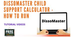 Video #26 - Getting Educated - Child Support PART 2 (DissoMaster)