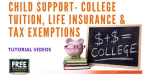 Video #30 - Getting Educated - Child Support PART 6 (Miscellaneous Issues)