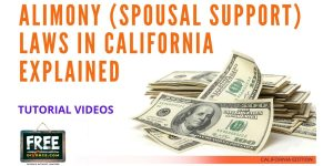 Video #31 - Getting Educated - Spousal Support PART 1 (Introduction)