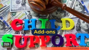 Video #29 - Getting Educated - Child Support - PART 5 (Child Support Add-ons)